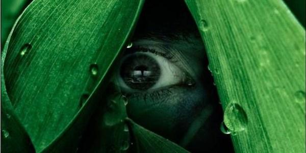 The River – Primeiras Impressões: Uma série com cara de a Bruxa de Blair
