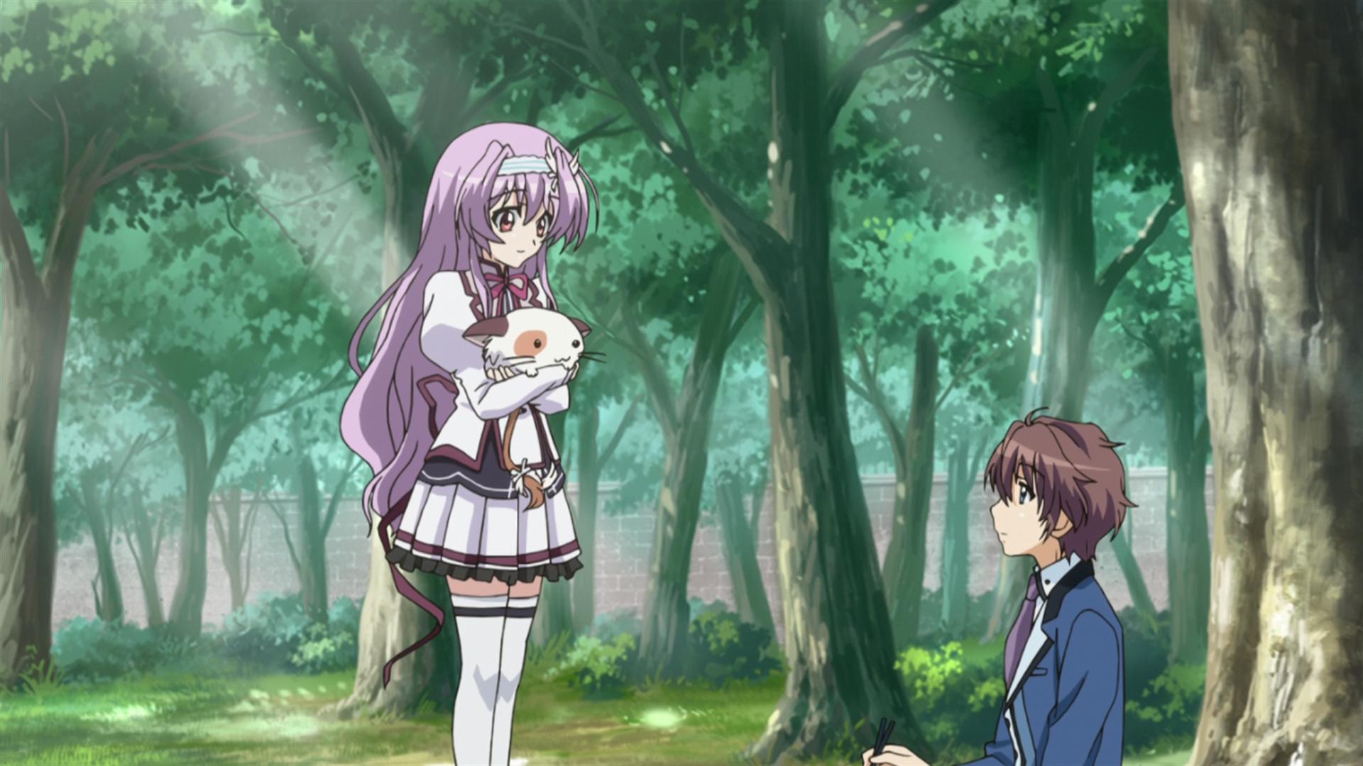 Shingo, porque não basta ser cavalheiro, tem de ser prestativo!