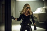 Birds of Prey Arrow-Caity Lotz - Black Canary - Canário Negro