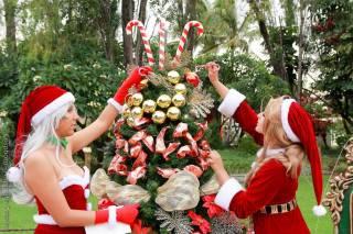 starship belldandy cosplay sexy Christmas natal Nayigo Cosplay urd Christmas natal