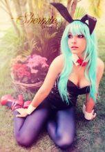 shermie cosplay bulma bunny sexy ecchi