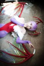 Momoren Cosplay Lilith Darkstalkers sexy