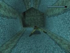tomb-raider-playstation-gameplay-screenshot-2